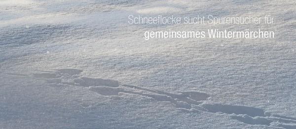 910787 - Windlicht (3 Stk.): Schneeflocke sucht Spurensucher…(Spur im Schnee)