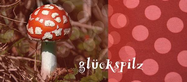 910630 - Windlichtkarte: Glückspilz (Fliegenpilz)