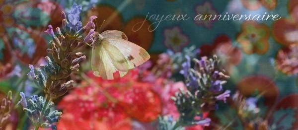 910832 - Windlichtkarte: joyeux anniversaire (Schmetterling)