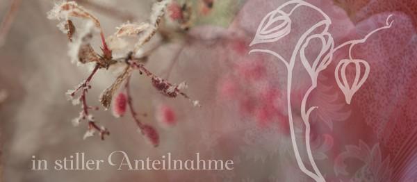 910636 - Windlichtkarte: In Stiller Anteilnahme (Hagenbutte)