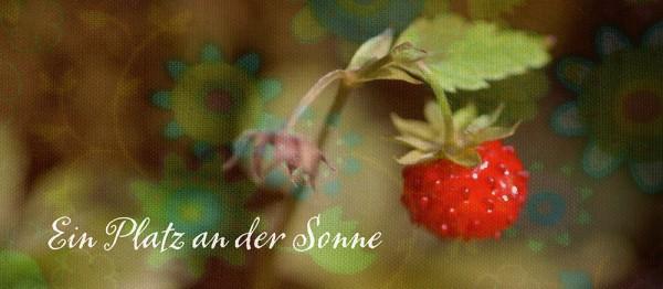 910722 - Windlicht (3 Stk.): Ein Platz an der Sonne (Erdbeere)