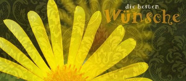 910700 - Windlicht (3 Stk.): Die besten Wünsche (Blüte gelb)
